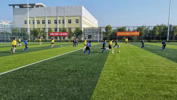 西乡:2019年小学生足球联赛圆满落幕
